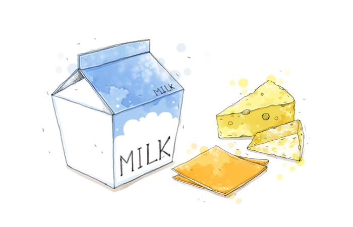 우유제조공정3