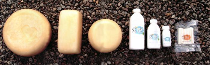 ▲ 친환경 무항생제 인증의 애심목장 치즈 & 요거트 (출처: http://welovefarm.com/milk)
