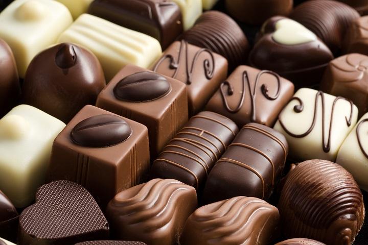 photo shot of various chocolate pralines